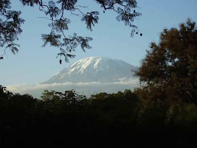 Гора Килиманджаро- самая высокая вершина Африки