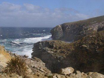 Фолклендские острова, фото BluesyPete / Wikimedia Commons