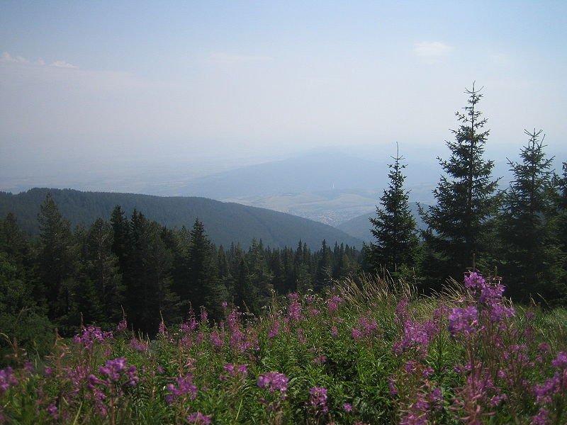 Парк Витоша, Болгария