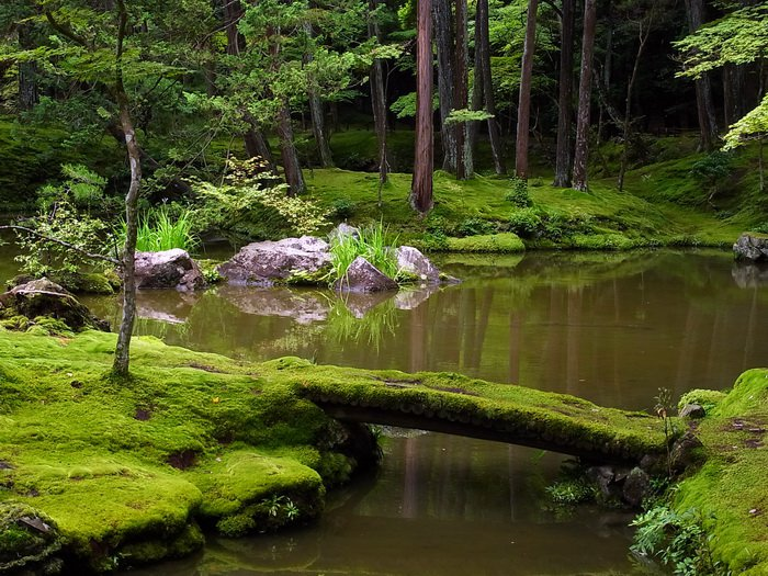 Сайхо-дзи, Киото, фото ethanrainwater.wordpress.com