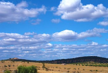 Равнины Алентежу, фото Andrewbarroso