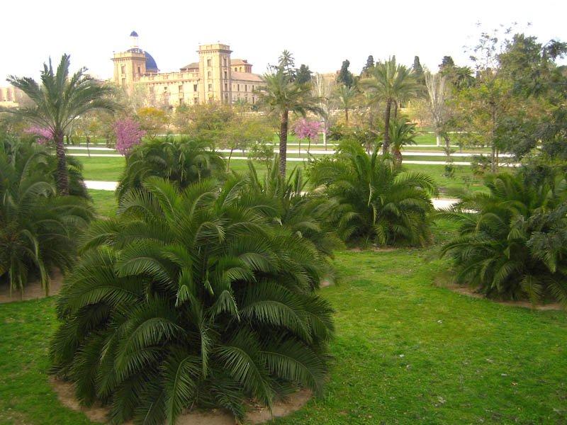 Сады Турии, Валенсия