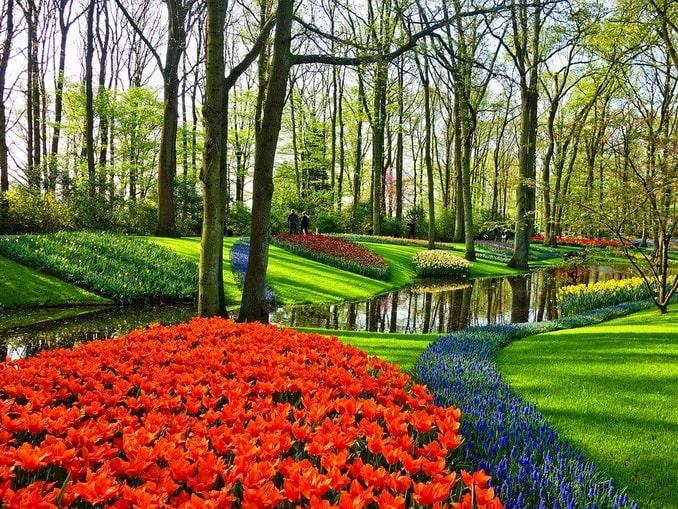 Парк тюльпанов Кекенхоф, Нидерланды