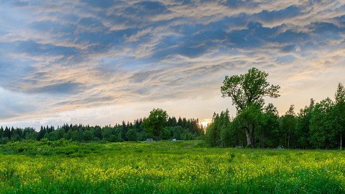 Россия, природа