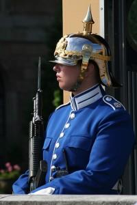 Безусый охранник Королевской дворца в Стокгольме