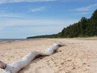 Латвия, побережье Балтийского моря