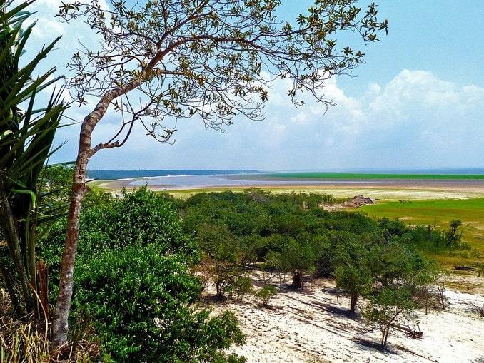 Долина реки Амазонка в Южной Америке