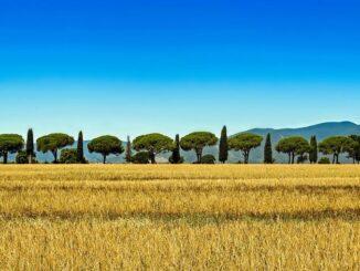 Тоскана - один из топовых регионов Италии