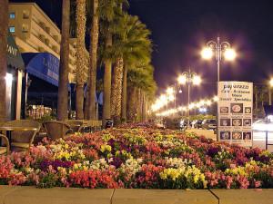 Авеню Фуникудес, Ларнака