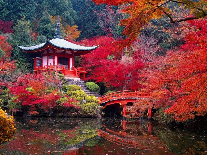 Сайходзи, осень, фото http://mostbeautifulplacesintheworld.org