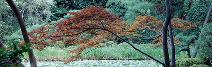 География и климат Японии