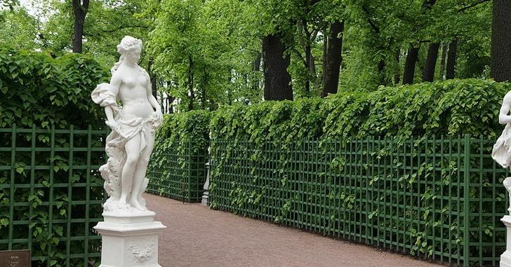 Летний сад в Санкт-Петерурге, фото Евгений Со / Wikimedia Commons
