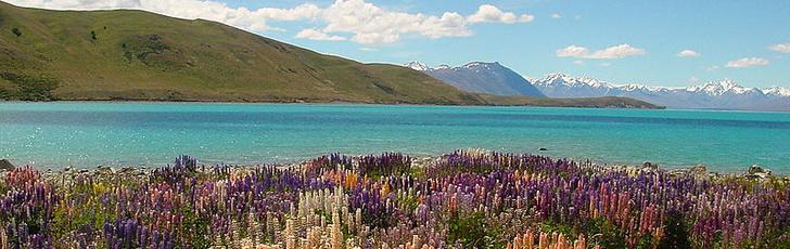 Новая Зеландия: погода, когда ехать