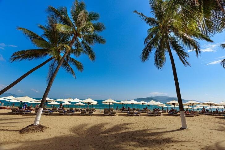 Нячанг, пляж, пальмы
