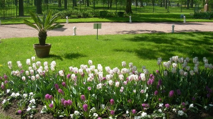 Парк Александрия, Петергоф