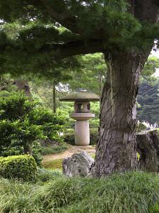 Дерево в парке Кэроку-эн