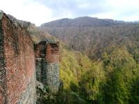 Замок Поенарь, Румыния