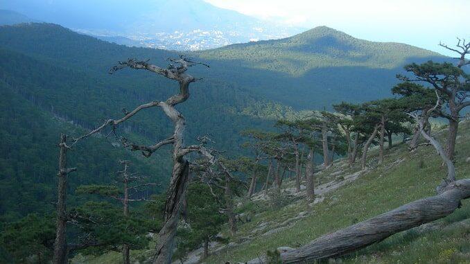 Кореизская тропа, на Ай-Петри в Крыму