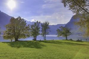 Пейзаж на озере Бохинь