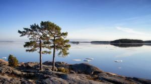 Деревья, озеро, Финляндия