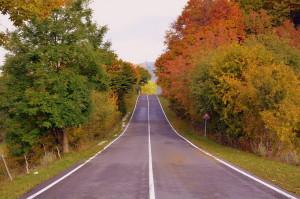 Провинциальное шоссе в Италии