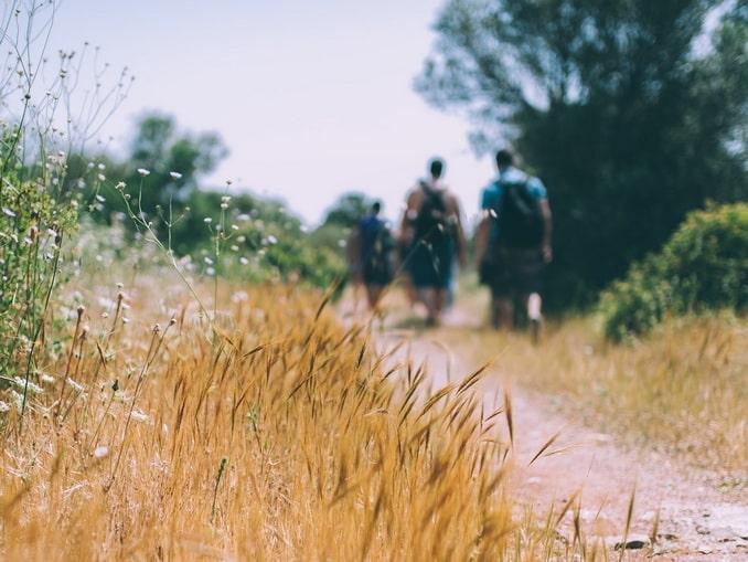 Пешие туристы - что нужно взять в поход на день?