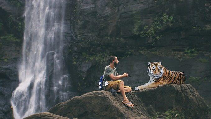 Человек и животное