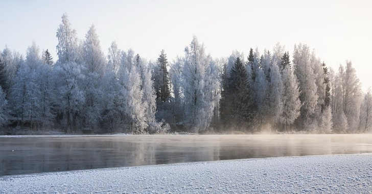 Финляндия, Новый год