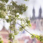 Прага в апреле и мае