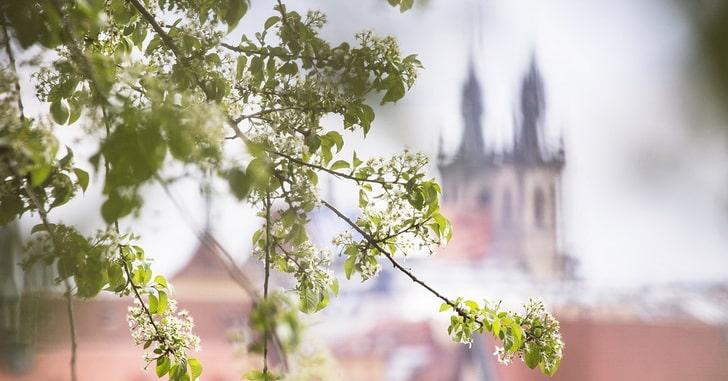 Прага, весна