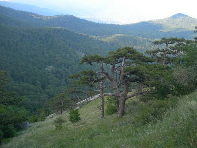 Вид с Кореизской тропы на горы, Крым