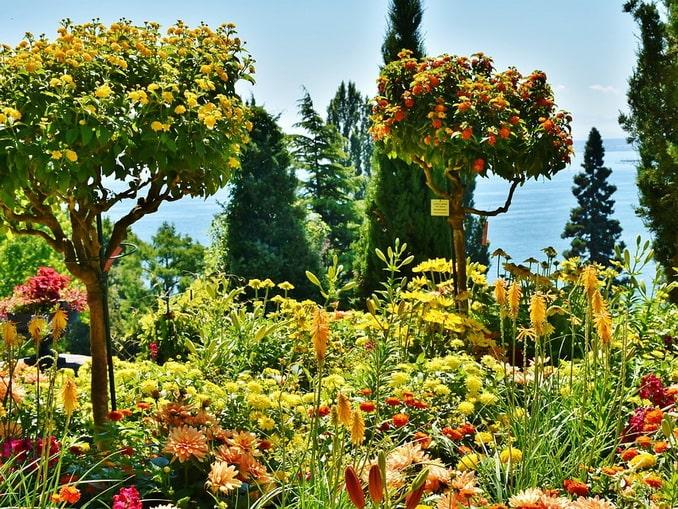 Сад на Майнау, Германия