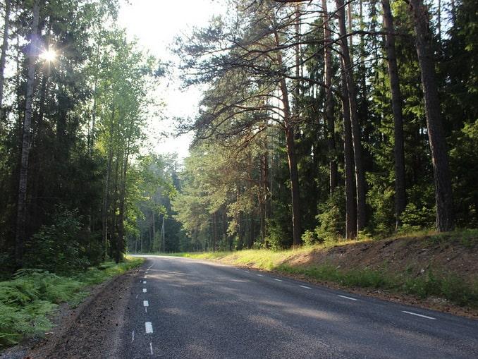 Дорога в Эстонии