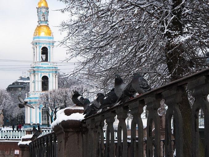 Колокольня Никольского собора, Коломна, Санкт-Петербург