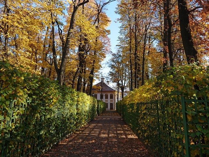 Летний сад, Санкт-Петербург, осень