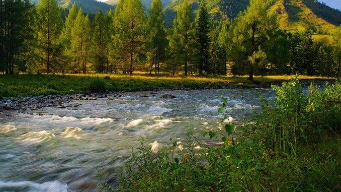 Алтай в мае, река