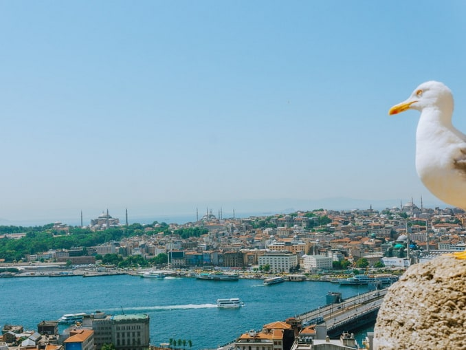Вид на Стамбул летом с площадки Галатской башни