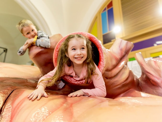 В музей Титикака в Питере обязательно нужно пойти с детьми