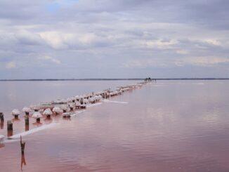 Озеро Сасык-Сиваш в Крыму - действительно розовое!